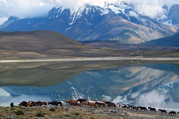 Длинные тропы - Большая тропа Патагонии, Чили и Аргентина (1311 км)