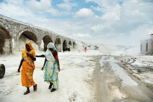 Самые красивые места Индии с фото и описанием - Соляные поля Гуджарата