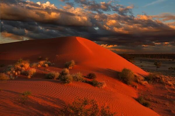 Самые красивые пустыни мира с фото и описанием - Пустыня Симпсон в Австралии