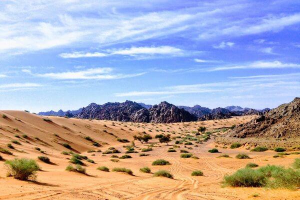 Самые красивые пустыни мира с фото и описанием - Пустыня Симпсон в АвстралииСамые красивые пустыни мира с фото и описанием - Пустыни Аравийского полуострова