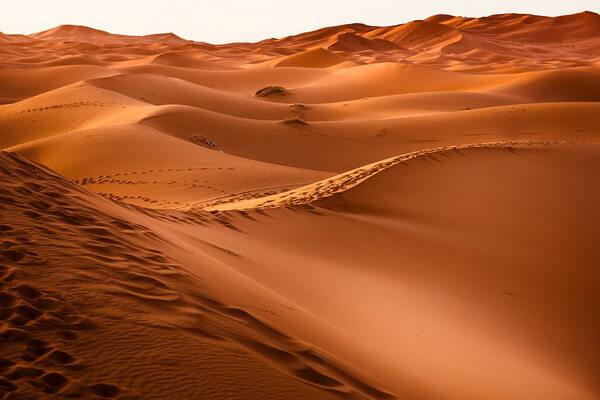 Самые красивые пустыни мира с фото и описанием - Пустыня Сахара