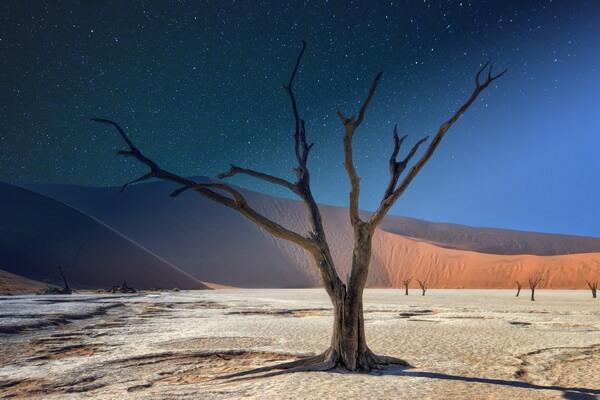Самые красивые пустыни мира с фото и описанием - Пустыня Намиб в Намибии, Дедфлей