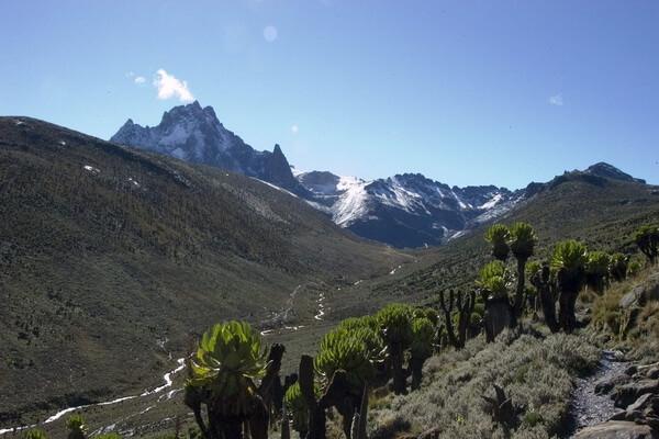 Самые высокие горы в Африке с фото и описанием - Пик Ленана