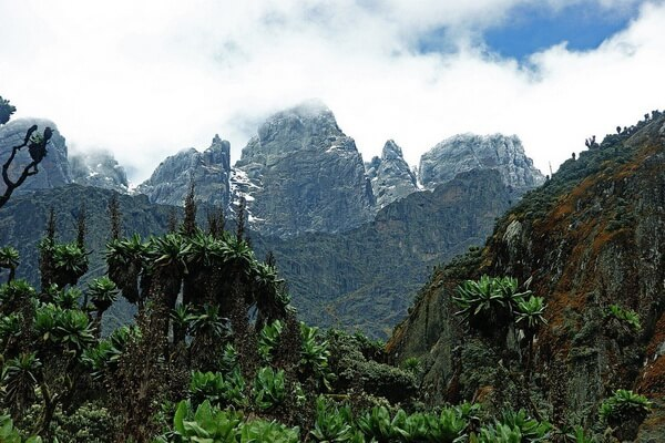 Самые высокие горы в Африке с фото и описанием - Рувензори