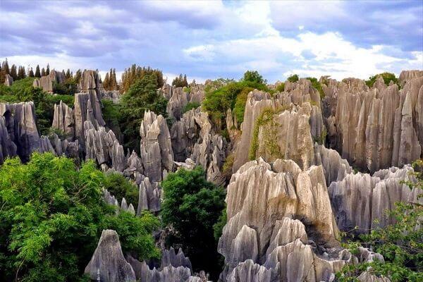 Каменный лес Шилинь в Китае - красивые фото