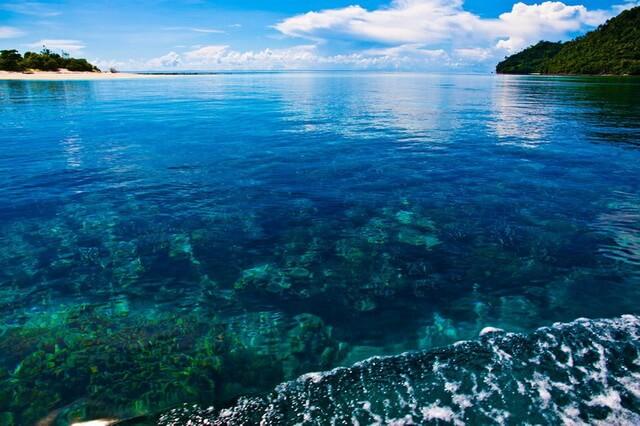 Коралловое море - где находится, история, основные обитатели