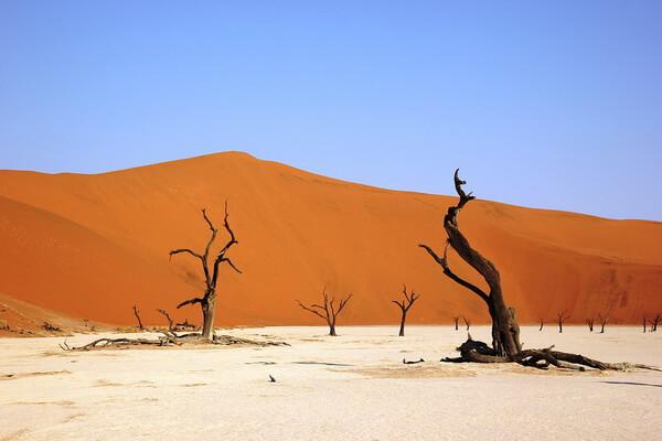 Мёртвая долина в Намибии