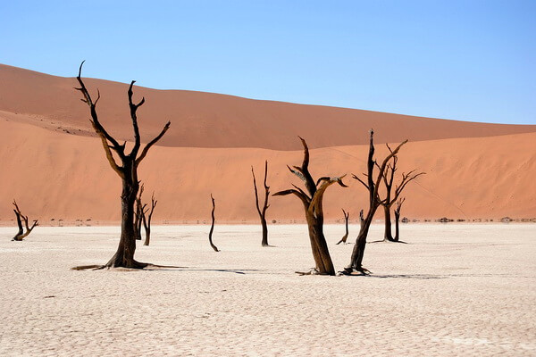 Мёртвая долина Намибии