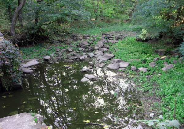 Трикратский лес Лабиринт