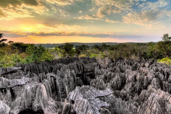 Каменный лес Цинги-де-Бемараха