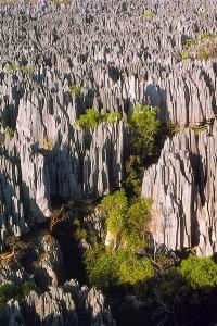 tsingy-de-bemaraha-national-park-madagaskar