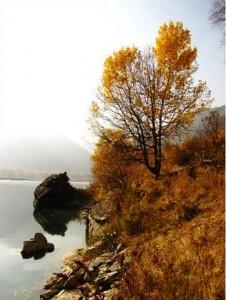 Тургеньское ущелье осенью