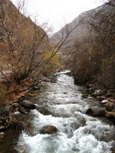 Тургеньские водопады