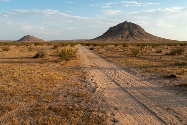 Виды пустынь - Субтропическая пустыня (пример - пустыня Мохаве)
