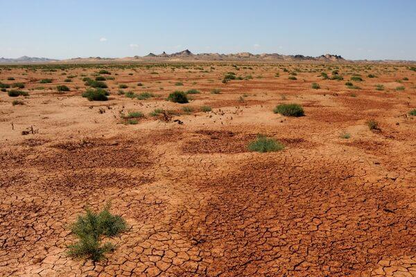 Виды пустынь - Полупустыня (пример - пустыня Гоби)