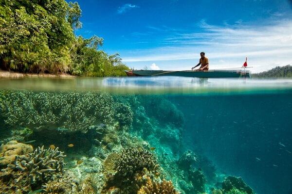 Самые красивые национальные парки - Комодо, Индонезия